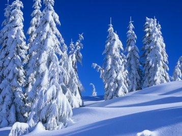 fresh-snow-mount-elphinstone-british-columbia