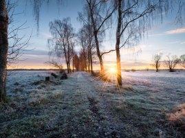 winter-sunrise-germany