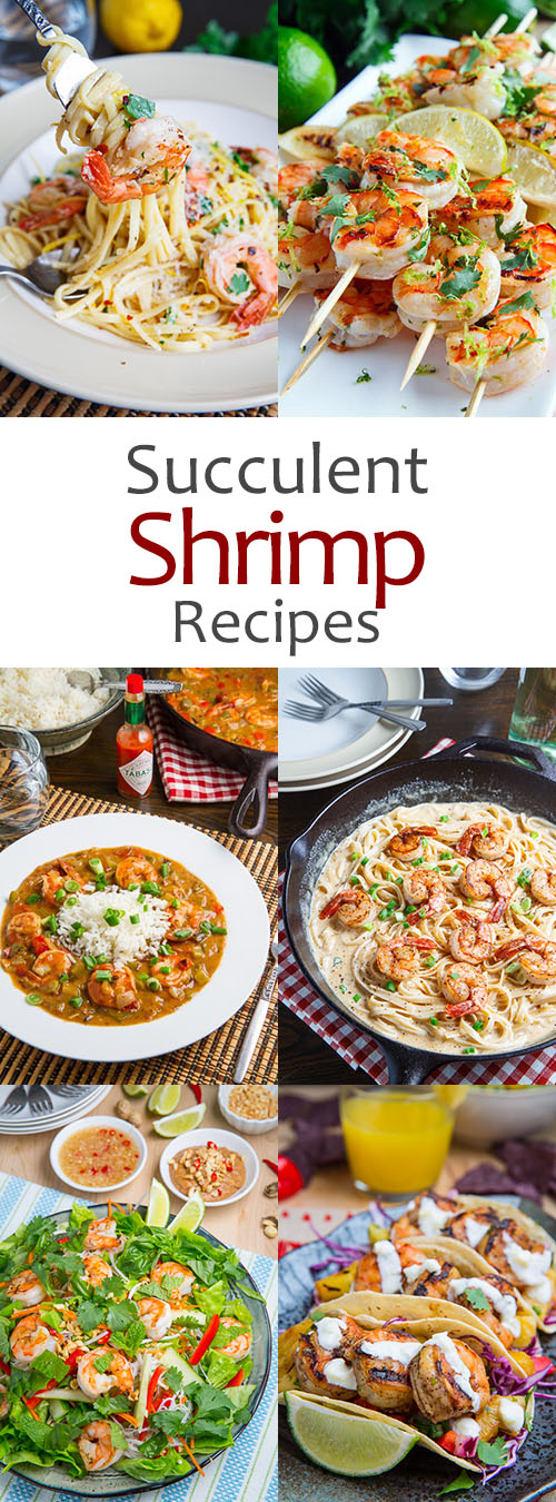Awesome Succulent Shrimp Recipes By Closet Cooking